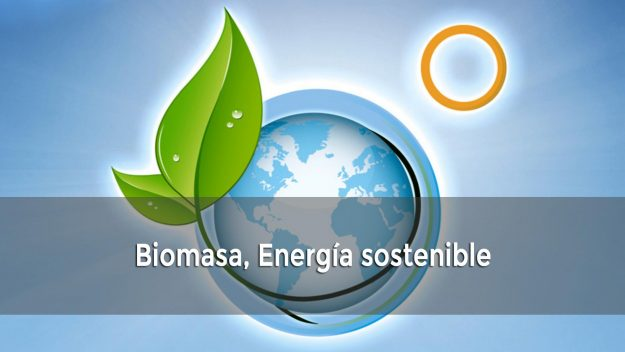 Biomsa, Energía sostenible
